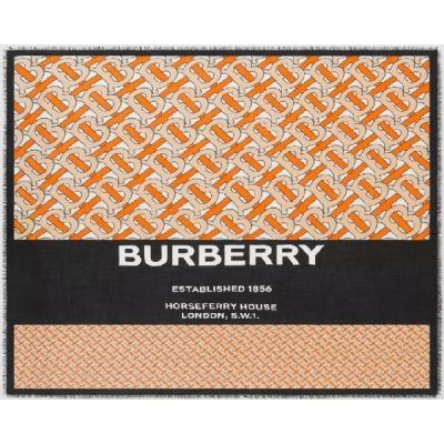 Платки и шарфы Burberry Модель K029