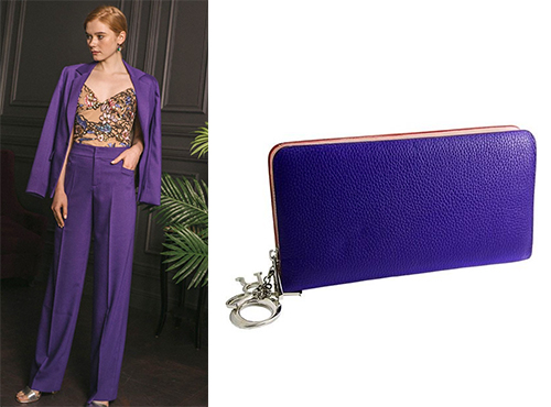 Жіноча міні-сумка Christian Dior на «змійці»